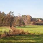 Jesienią pola pachną … inaczej – wiecie co mam na myśli, dobrze, że zaczął się las :)