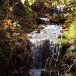 Ciszę przerwał szum małego potoku