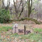 Stary Łoskoń i stary cmentarz niemiecki
