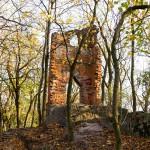 Radojewo. W parku ruiny