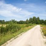 Droga do osady Eru