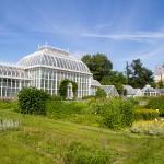 Uniwersytecki Ogród Botaniczny