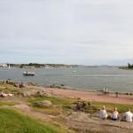 Piknik w Zatoce Fińskiej
