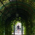 Kadriorg – tunel zieleni