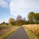 Cisza i spokój na wąskiej lokalnej drodze