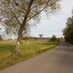 Szlaki rowerowe zaczynają się i kończą na rynku w Gnieźnie. Więcej informacji na stronach powiat-gniezno.pl