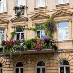 Balkon aż ugina się od zieleni i kwiatów