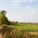 Ostrowieczno – rozległa panorama po wyjechaniu z lasu