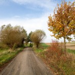 Na drodze Kotowo – Bodzyniewo