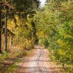 Na żółtym szlaku rowerowym do Błociszewa