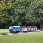 Großer Garten – kolejka parkowa