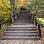 Nowe schody na górę z którego wybija źródełko