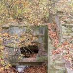 Tomice. Ruiny młyna wodno-parowego