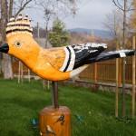 Stryszawskie ptaszki