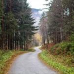 Droga prowadząca na Wsiórz