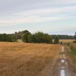 Gdzieś na szlaku do Marcinkowic
