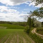 Krajobrazy za Kluczewem