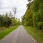 W drodze do Gronowa