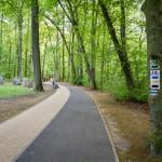 W miejskim parku im. F. Chopina megality ustawione w półokręgu