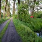 Obszar natura 2000 – Będlewo – Bieczyny