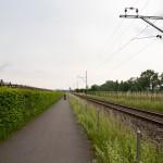 Droga rowerowa wzdłuż torów