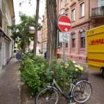 Kawałek wolnej przestrzeni to miejsce na kwiaty i znak drogowy