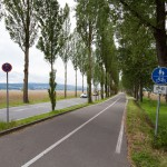 Ciąg pieszo-rowerowy na grobli obsadzony topolami prowadzi na wyspę Reichenau