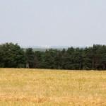 Panorama Gorzowa. Rozgrzane powietrze mocno rozmywa obraz
