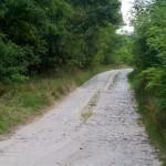 Szlak rowerowy do wsi Rogi