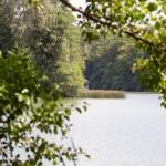 Na cyplu wiata i punkt widokowy na jezioro