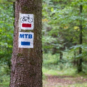 MTB Łobez - szlak rowerowy