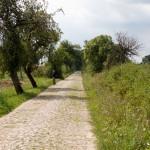 Stara brukowana droga