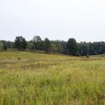 Pagórkowaty krajobraz Pojezierza Drawskiego