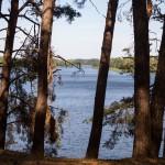 Jezioro Ślesińskie widziane ze skarpy
