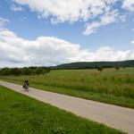 Asfaltowa droga wśród łąk
