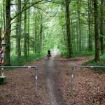 Na tym odcinku szlak wokół jeziora Bodeńskiego pokrywa się z wieloma innymi lokalnymi szlakami.