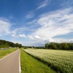 Na drodze rowerowej – okolice Allensbach i Hegne