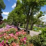 Langenargen– przy promenadzie