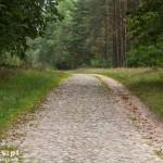 Sienica – stara brukowana droga