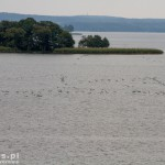 Widok z punktu widokowego na półwysep Ostry Róg a tuż za nim wyspa Sołtysia