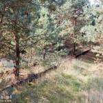 Była linia kolejowa Krzyż – Czarnków/Lubasz