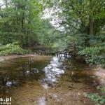 Rzeczka łącząca jeziora Ostrowiec i Bucierz