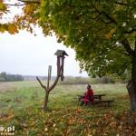 Ziemsko. Ławka z widokiem na Łąki Studnickie