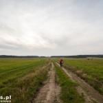 Droga przez pola do Świerczyny