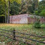 Ostrowiec. Dawny cmentarz i ruiny przycmentarnego kościoła