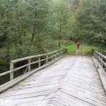 Drewniany most na Drawie. To 36 km szlaku kajakowego spływu Drawą