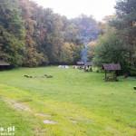 Lasy państwowe udostępniły wiele miejsc biwakowych nad Drawą