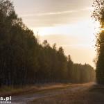 Droga przez poligon