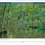 Aplikacja Lasy Państwowe. Zdjęcia i opisy atrakcji