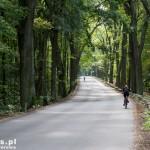 Grunewald – szosa Hawelańska